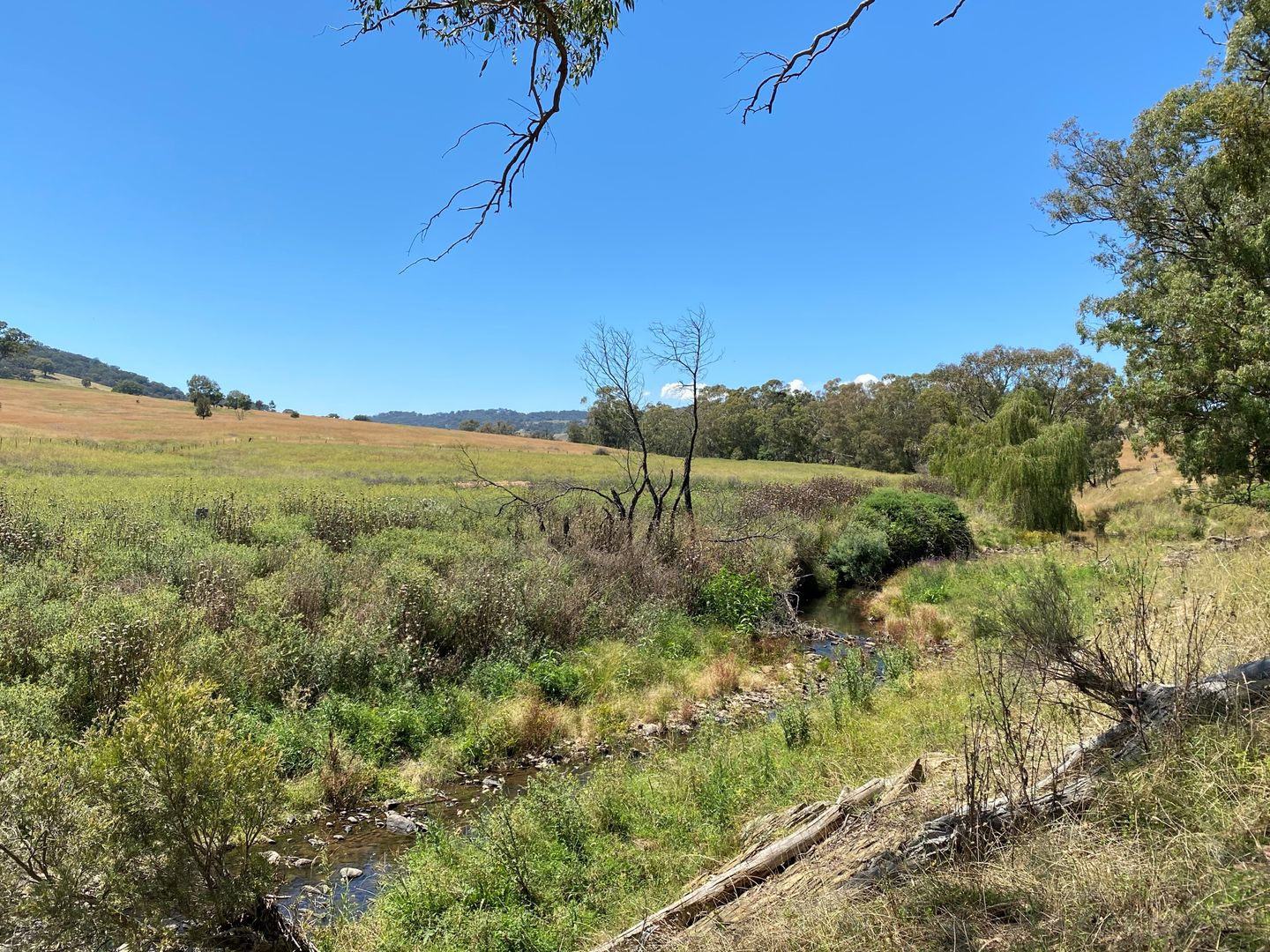 39 Campbells Creek Road, Mudgee NSW 2850, Image 0