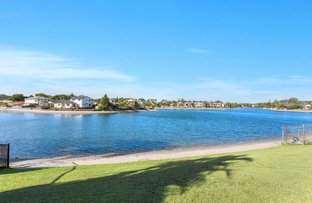 Picture of 91 Guineas Creek Road, Elanora QLD 4221