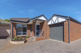 Picture of 2/1C Rosedale Place, Magill SA 5072
