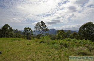 Picture of Lot 2 Sarabah Rd, Sarabah QLD 4275