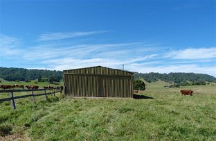 Picture of 292 Fawcetts Plain Road, Kyogle NSW 2474