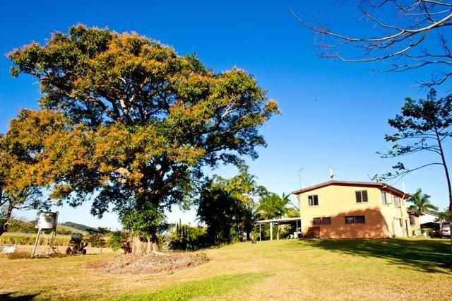30 Moohins Road, HABANA QLD 4740, Image 2
