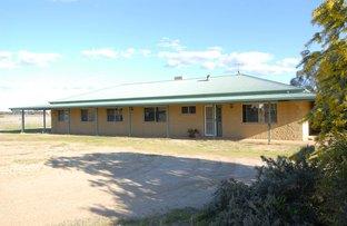 70 Mulumbah Road, Deniliquin NSW 2710