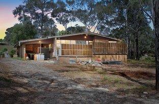 Picture of Lot 53 Elizabeth Macarthur Avenue, Camden South NSW 2570