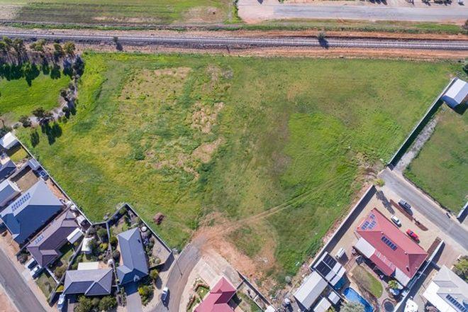 Picture of Lot 602 Coachwood Lane, BALAKLAVA SA 5461
