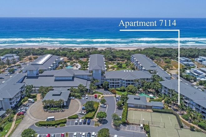 Picture of 7114/9 Gunnamatta Drive, KINGSCLIFF NSW 2487