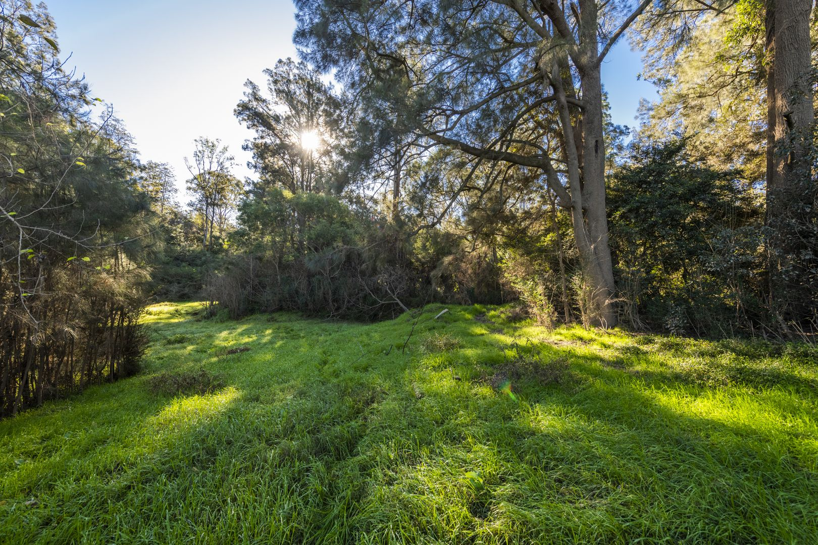 3610 Orara Way, Kremnos NSW 2460, Image 2