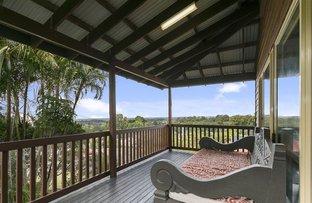 Picture of 17 Mountain Ridge Cr, Buderim QLD 4556