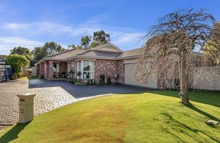 Picture of 5 Lightwood Court, South Morang VIC 3752