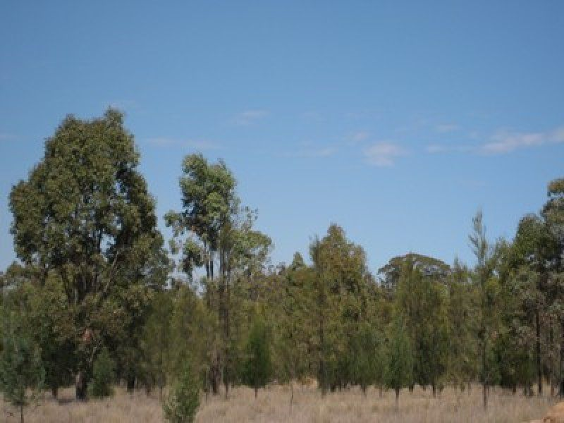 Rauchle Road, Stonehenge QLD 4357, Image 0