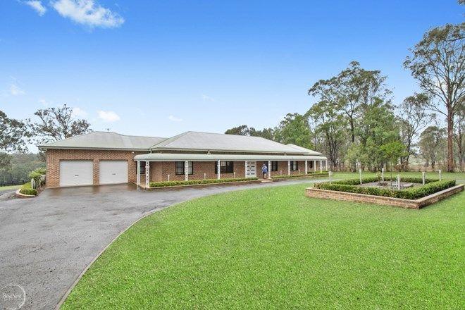 Picture of GLOSSODIA NSW 2756