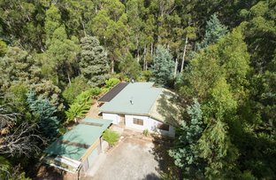 Picture of 60 Leatherwood Drive, Penguin TAS 7316