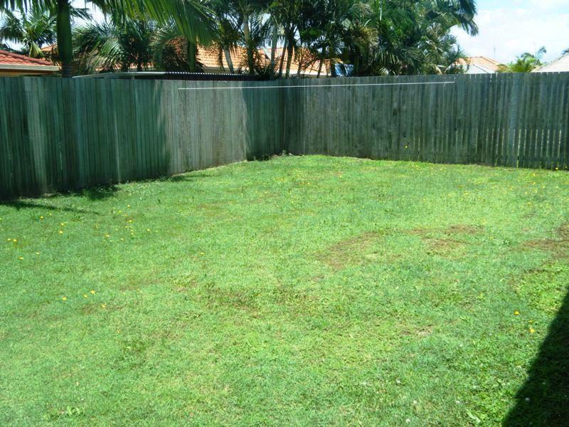18 Honeymyrtle Court, Mountain Creek QLD 4557, Image 2
