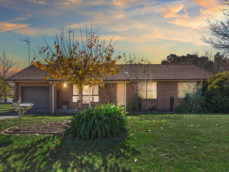 8 Tudor Place, Orange NSW 2800, Image 0