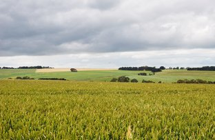 Picture of - Narrapumelap Road, Wickliffe VIC 3379