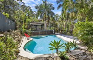 Picture of 17 Wandearah Crescent, Ferny Hills QLD 4055