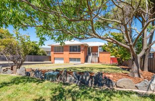 Picture of 12 Crandon Crescent, Newnham TAS 7248
