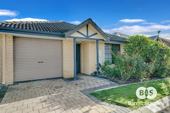 Picture of 60/146 Strickland Street, EAST BUNBURY WA 6230