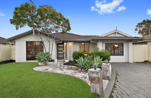 Picture of 12 Dawes Place, Bligh Park NSW 2756