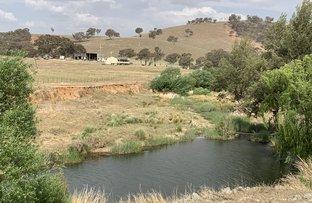 Picture of 1550 Crudine Rd, Crudine NSW 2795