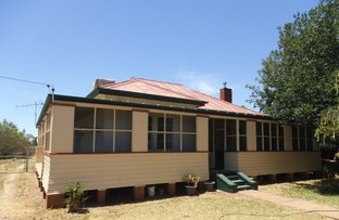8 Dandaloo Street, Trangie NSW 2823