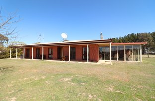 Picture of 1671 Murrumbateman Road, Gundaroo NSW 2620