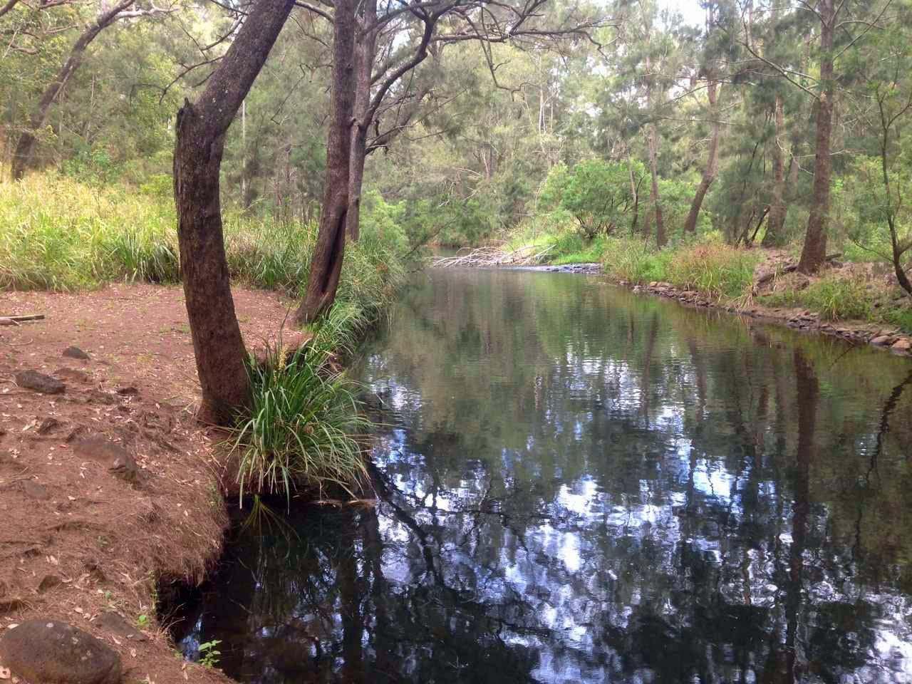 127 RIVER ROAD, Millstream QLD 4888, Image 0