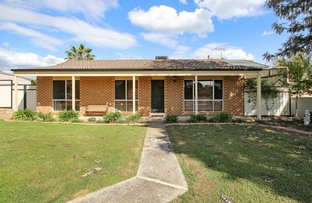 Picture of 10 Cedar Court, Thurgoona NSW 2640
