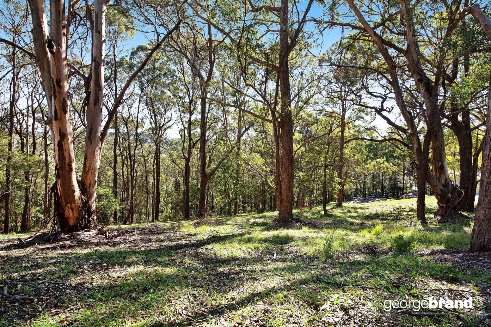 361 The Scenic Road, MacMasters Beach NSW 2251, Image 2