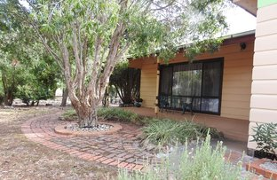 Picture of 12 Ashwin Street, Violet Town VIC 3669