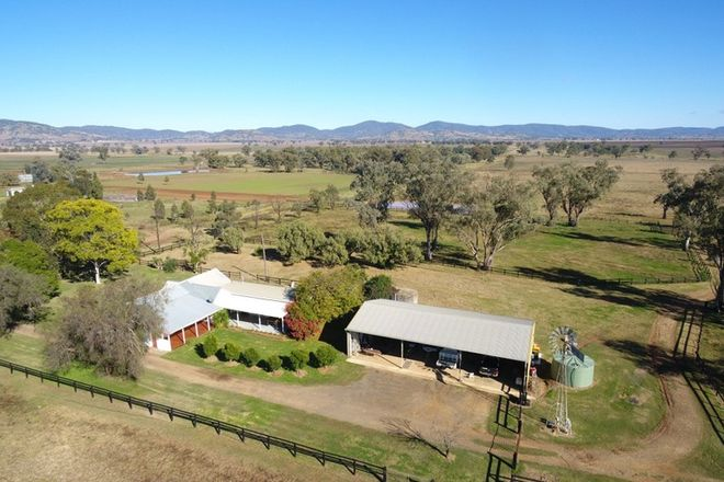 "Picture of ""Myall Farm"", 520 Bayliss Lane, TAMWORTH NSW 2340"