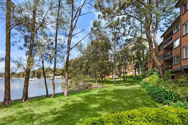 Picture of 10/302 Burns Bay Road, LANE COVE NSW 2066