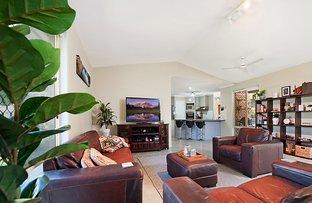 Picture of 20 Kolora Place, Palmwoods QLD 4555