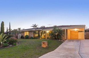 Picture of 146 Trappers Drive, Woodvale WA 6026