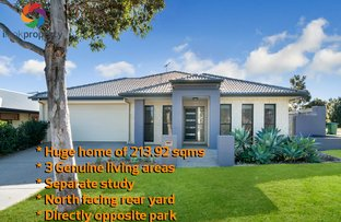 31 Planigale Crescent, North Lakes QLD 4509