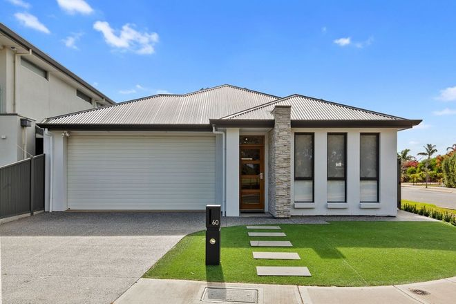 Picture of 60 Newcombe Avenue, WEST LAKES SHORE SA 5020