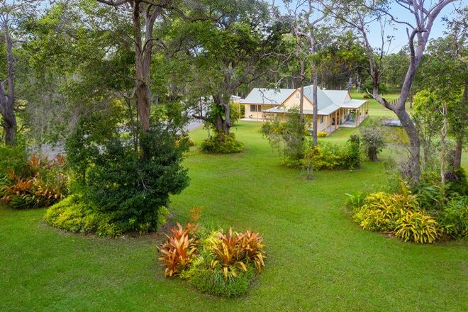 Picture of 30 Goshawk Lane, RINGTAIL CREEK QLD 4565