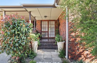 Picture of 5/8 Hill Street, Burnside SA 5066