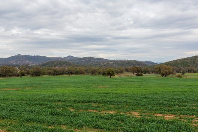 Picture of Grazing Babbinboon Rd, PIALLAWAY NSW 2342