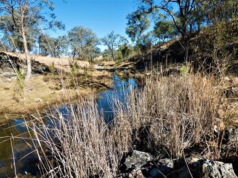 Lot 3 Springdale Road, Glenlyon QLD 4380, Image 1