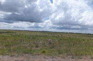 Picture of Lot 549 Godenia Way, Hopetoun WA 6348