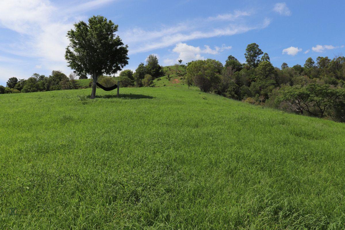 189 Snake Gully Road, Palen Creek QLD 4287, Image 2