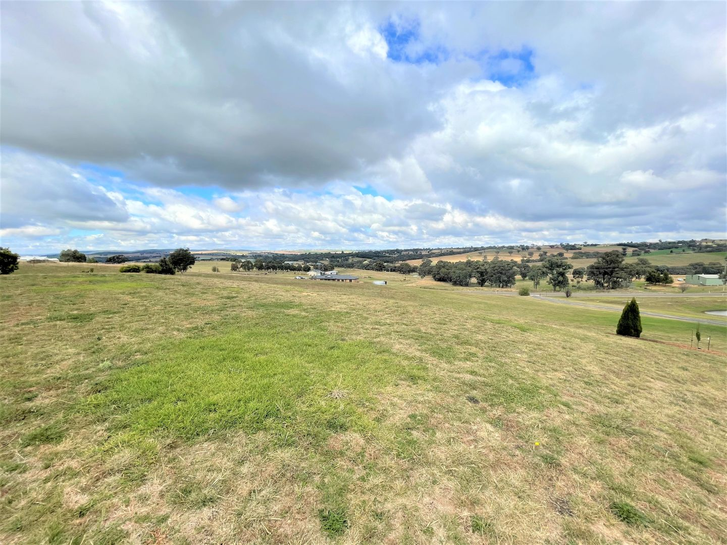 105 Donges Road, Young NSW 2594, Image 2