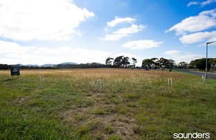 Picture of 8 Rose Avenue, George Town TAS 7253