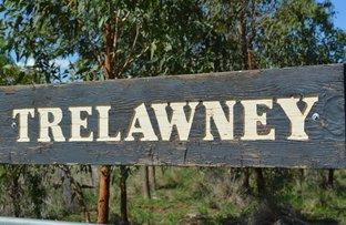 Picture of 1349 Wandobah Rd, Gunnedah NSW 2380