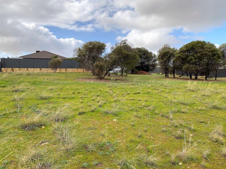 12 Bunker Way, Northam WA 6401, Image 1