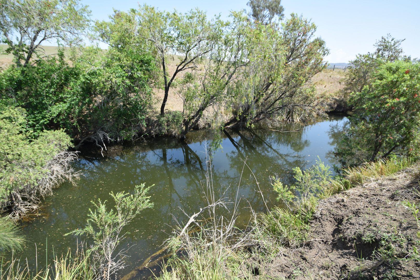 391 Kangaroo Creek Road, Harlin QLD 4306, Image 0