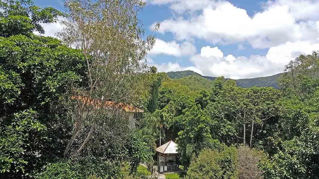 40 Clifton Road, Clifton Beach QLD 4879, Image 0