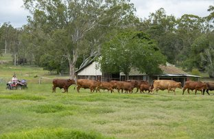 Picture of 482 Hetheringtons Rd, Manyung QLD 4605