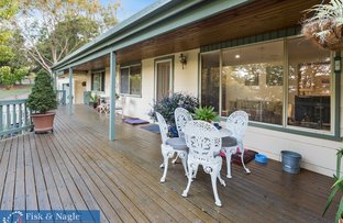 Picture of 519 Towridgee Lane, Toothdale NSW 2550